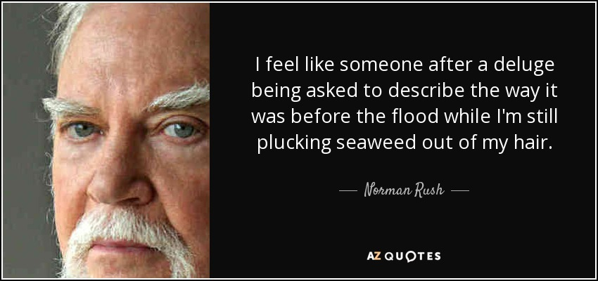I feel like someone after a deluge being asked to describe the way it was before the flood while I'm still plucking seaweed out of my hair. - Norman Rush
