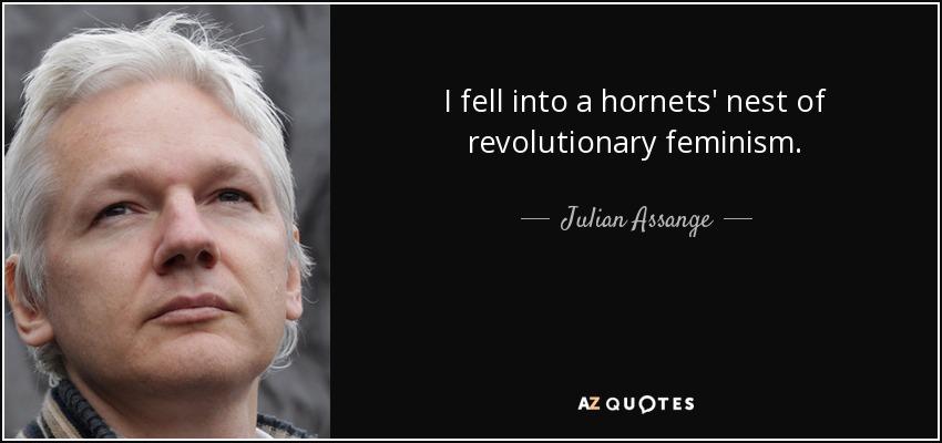 I fell into a hornets' nest of revolutionary feminism. - Julian Assange