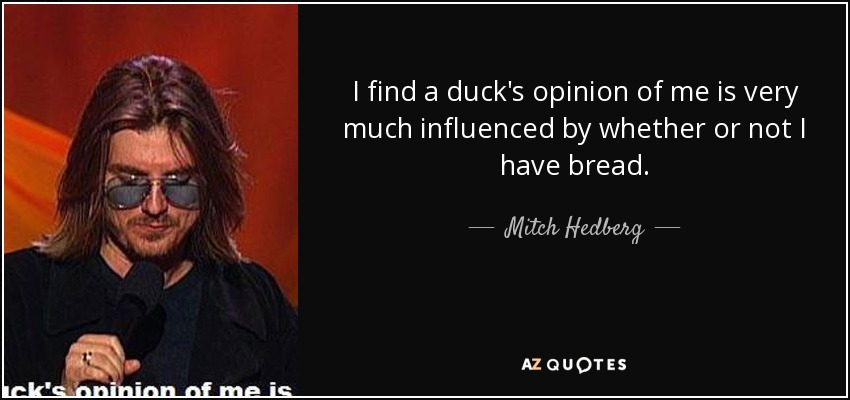Mitch Hedberg Quote: I Find A Duck's Opinion Of Me Is Very