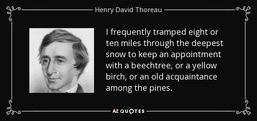 I frequently tramped eight or ten miles through the deepest snow to keep an appointment with a beechtree, or a yellow birch, or an old acquaintance among the pines. - Henry David Thoreau
