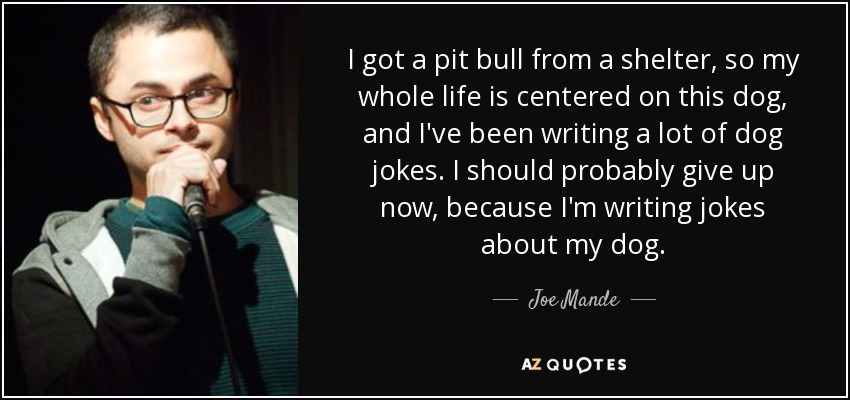 I got a pit bull from a shelter, so my whole life is centered on this dog, and I've been writing a lot of dog jokes. I should probably give up now, because I'm writing jokes about my dog. - Joe Mande