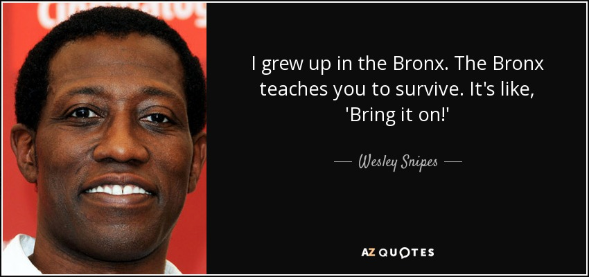 I grew up in the Bronx. The Bronx teaches you to survive. It's like, 'Bring it on!' - Wesley Snipes