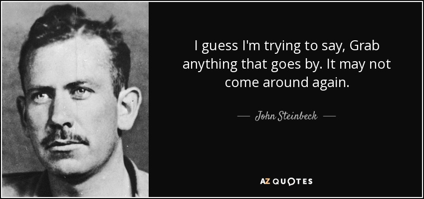 I guess I'm trying to say, Grab anything that goes by. It may not come around again. - John Steinbeck