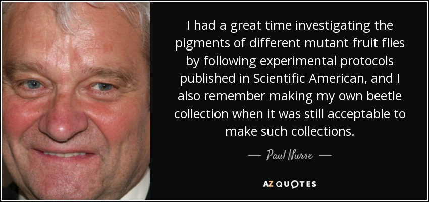 I had a great time investigating the pigments of different mutant fruit flies by following experimental protocols published in Scientific American, and I also remember making my own beetle collection when it was still acceptable to make such collections. - Paul Nurse