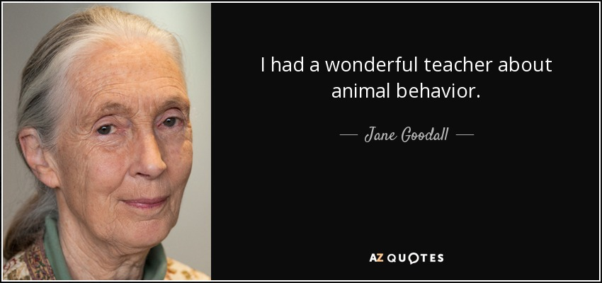 Jane Goodall Quote I Had A Wonderful Teacher About Animal Behavior