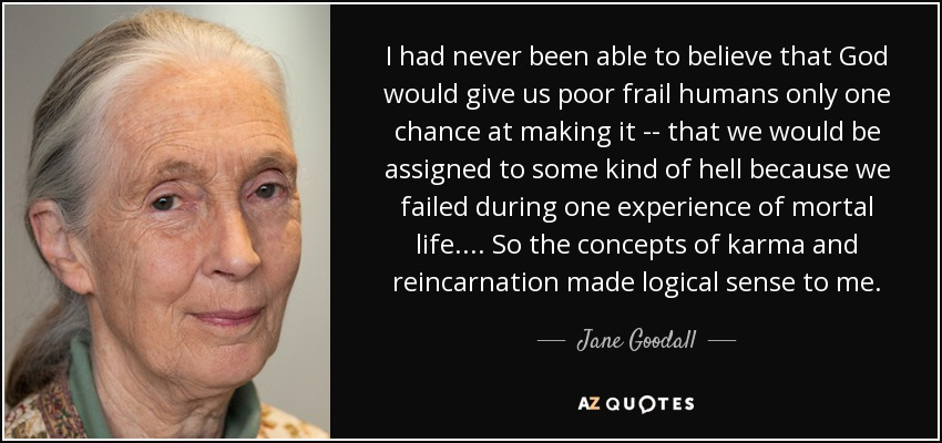 Jane Goodall Quote I Had Never Been Able To Believe That God Would
