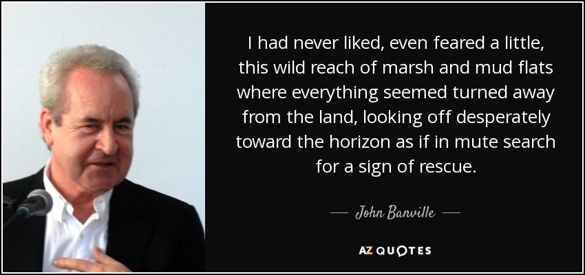 I had never liked, even feared a little, this wild reach of marsh and mud flats where everything seemed turned away from the land, looking off desperately toward the horizon as if in mute search for a sign of rescue. - John Banville