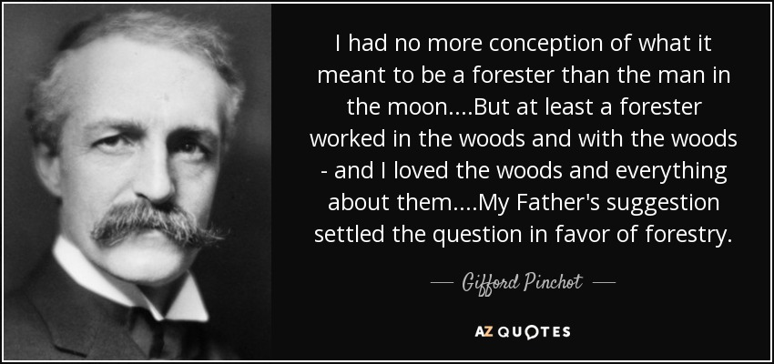 I had no more conception of what it meant to be a forester than the man in the moon....But at least a forester worked in the woods and with the woods - and I loved the woods and everything about them....My Father's suggestion settled the question in favor of forestry. - Gifford Pinchot