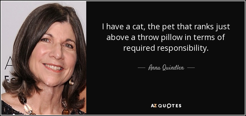 I have a cat, the pet that ranks just above a throw pillow in terms of required responsibility. - Anna Quindlen