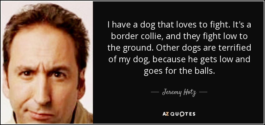 I have a dog that loves to fight. It's a border collie, and they fight low to the ground. Other dogs are terrified of my dog, because he gets low and goes for the balls. - Jeremy Hotz