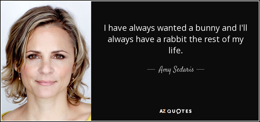 I have always wanted a bunny and I'll always have a rabbit the rest of my life. - Amy Sedaris