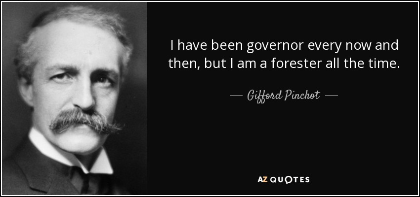 I have been governor every now and then, but I am a forester all the time. - Gifford Pinchot