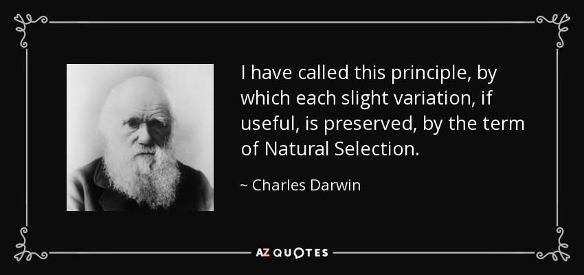 I have called this principle, by which each slight variation, if useful, is preserved, by the term of Natural Selection. - Charles Darwin