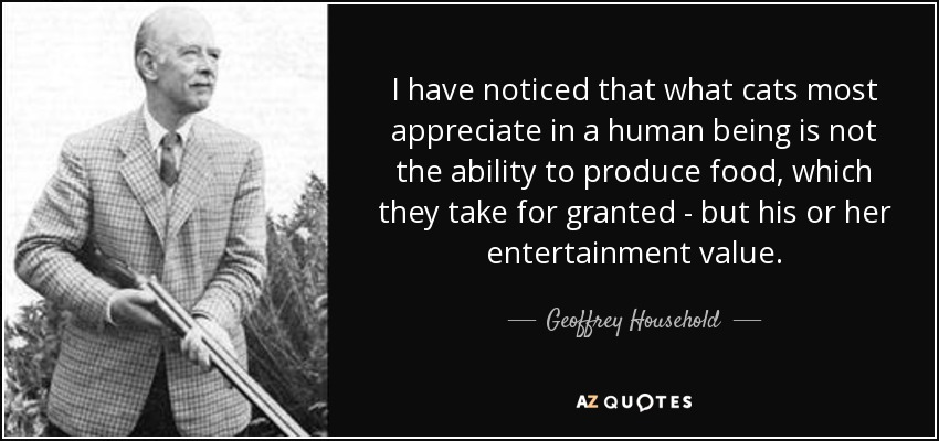 I have noticed that what cats most appreciate in a human being is not the ability to produce food, which they take for granted - but his or her entertainment value. - Geoffrey Household