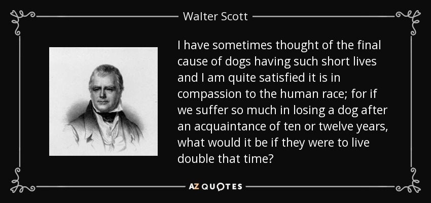 I have sometimes thought of the final cause of dogs having such short lives and I am quite satisfied it is in compassion to the human race; for if we suffer so much in losing a dog after an acquaintance of ten or twelve years, what would it be if they were to live double that time? - Walter Scott
