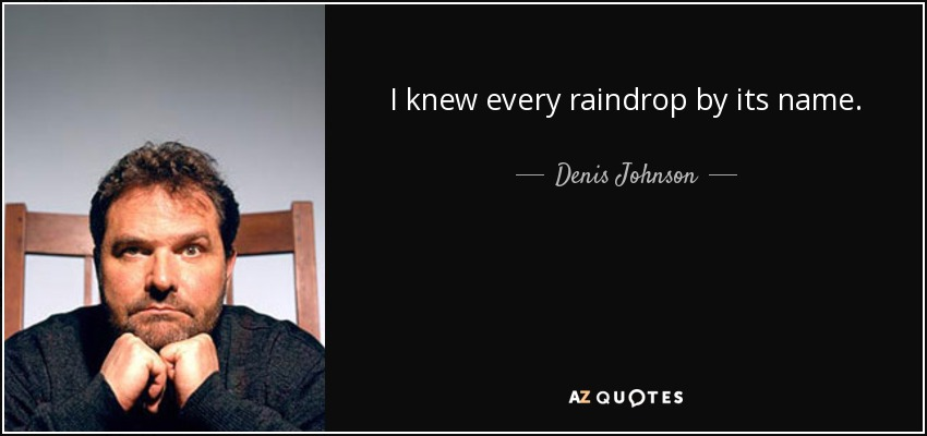 I knew every raindrop by its name. - Denis Johnson