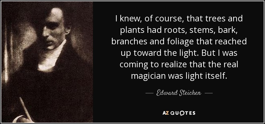 I knew, of course, that trees and plants had roots, stems, bark, branches and foliage that reached up toward the light. But I was coming to realize that the real magician was light itself. - Edward Steichen