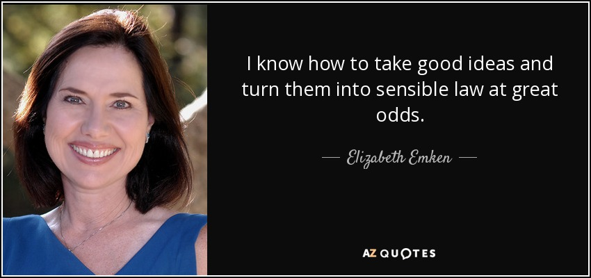 I know how to take good ideas and turn them into sensible law at great odds. - Elizabeth Emken