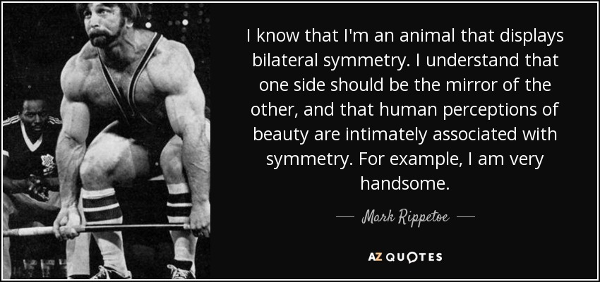I know that I'm an animal that displays bilateral symmetry. I understand that one side should be the mirror of the other, and that human perceptions of beauty are intimately associated with symmetry. For example, I am very handsome. - Mark Rippetoe