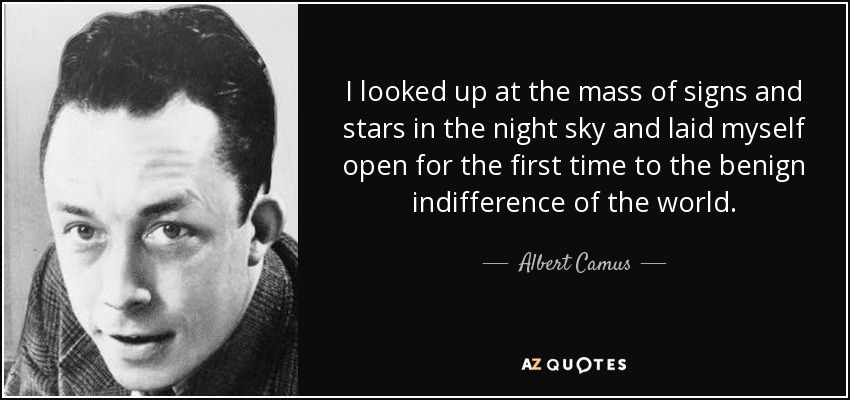 I looked up at the mass of signs and stars in the night sky and laid myself open for the first time to the benign indifference of the world. - Albert Camus