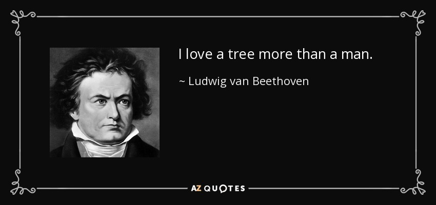 I love a tree more than a man. - Ludwig van Beethoven