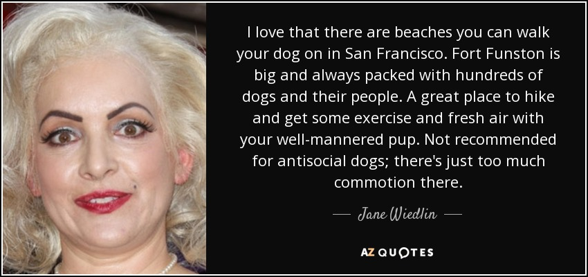 I love that there are beaches you can walk your dog on in San Francisco. Fort Funston is big and always packed with hundreds of dogs and their people. A great place to hike and get some exercise and fresh air with your well-mannered pup. Not recommended for antisocial dogs; there's just too much commotion there. - Jane Wiedlin