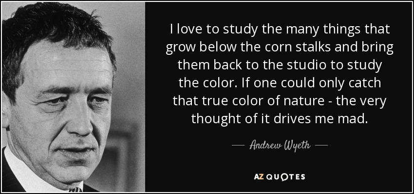 I love to study the many things that grow below the corn stalks and bring them back to the studio to study the color. If one could only catch that true color of nature - the very thought of it drives me mad. - Andrew Wyeth