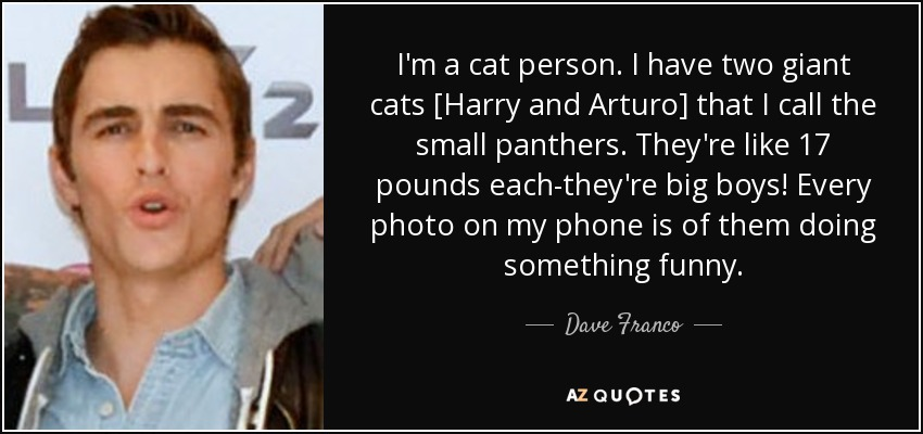 I'm a cat person. I have two giant cats [Harry and Arturo] that I call the small panthers. They're like 17 pounds each-they're big boys! Every photo on my phone is of them doing something funny. - Dave Franco