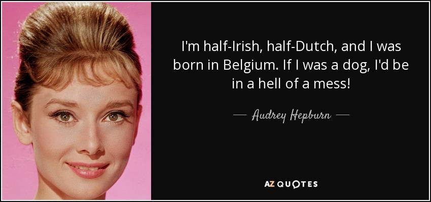 Belgien Irland Quote