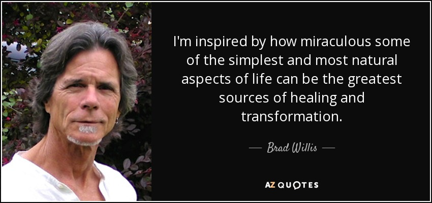 I'm inspired by how miraculous some of the simplest and most natural aspects of life can be the greatest sources of healing and transformation. - Brad Willis