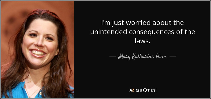 I'm just worried about the unintended consequences of the laws. - Mary Katharine Ham