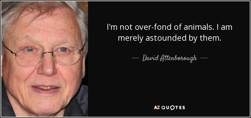 I'm not over-fond of animals. I am merely astounded by them. - David Attenborough