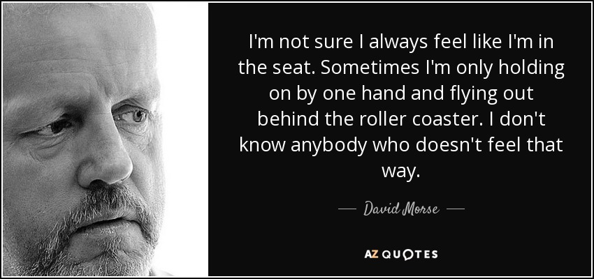 I'm not sure I always feel like I'm in the seat. Sometimes I'm only holding on by one hand and flying out behind the roller coaster. I don't know anybody who doesn't feel that way. - David Morse