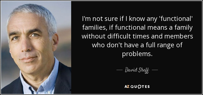 I'm not sure if I know any 'functional' families, if functional means a family without difficult times and members who don't have a full range of problems. - David Sheff