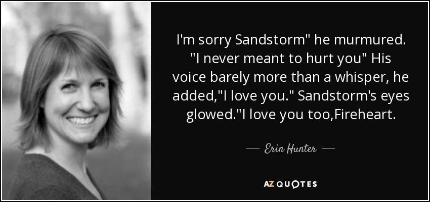 I'm sorry Sandstorm