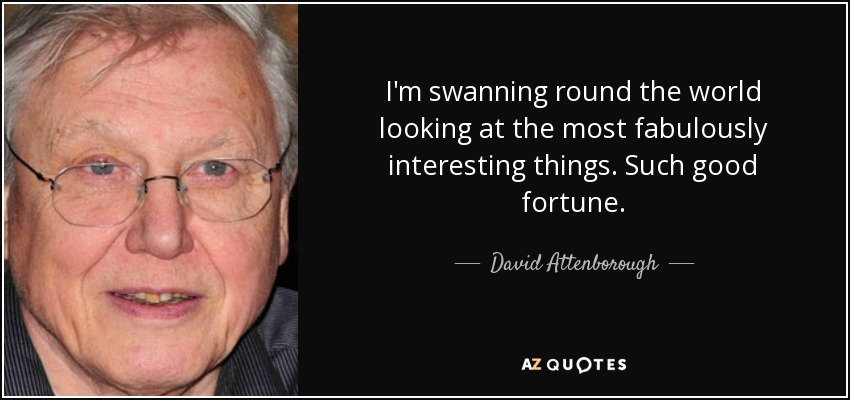 I'm swanning round the world looking at the most fabulously interesting things. Such good fortune. - David Attenborough