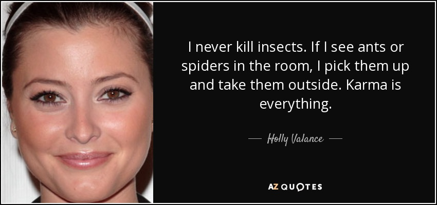 I never kill insects. If I see ants or spiders in the room, I pick them up and take them outside. Karma is everything. - Holly Valance