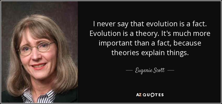 I never say that evolution is a fact. Evolution is a theory. It's much more important than a fact, because theories explain things. - Eugenie Scott