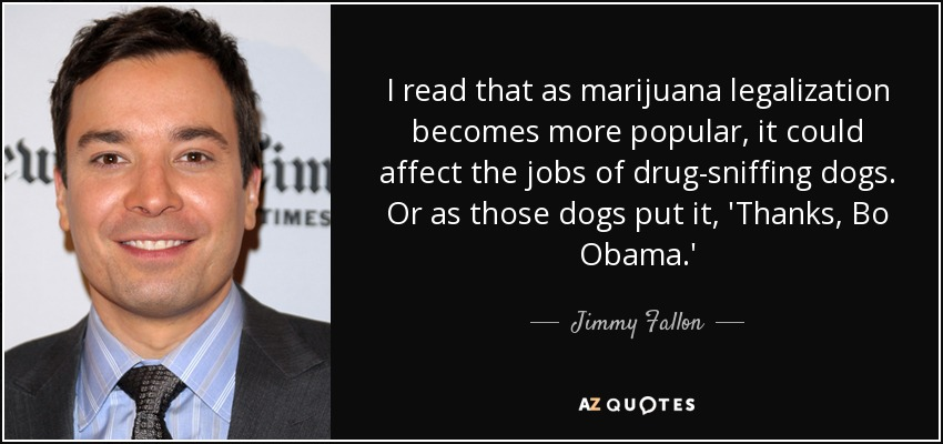 I read that as marijuana legalization becomes more popular, it could affect the jobs of drug-sniffing dogs. Or as those dogs put it, 'Thanks, Bo Obama.' - Jimmy Fallon