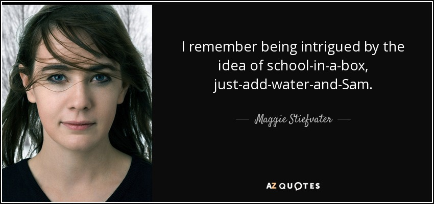 I remember being intrigued by the idea of school-in-a-box, just-add-water-and-Sam. - Maggie Stiefvater