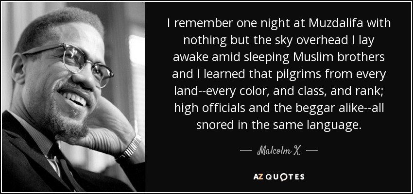 I remember one night at Muzdalifa with nothing but the sky overhead I lay awake amid sleeping Muslim brothers and I learned that pilgrims from every land--every color, and class, and rank; high officials and the beggar alike--all snored in the same language. - Malcolm X