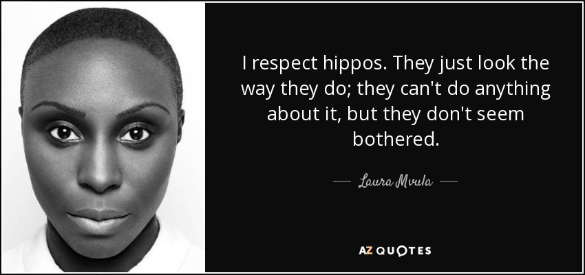 I respect hippos. They just look the way they do; they can't do anything about it, but they don't seem bothered. - Laura Mvula