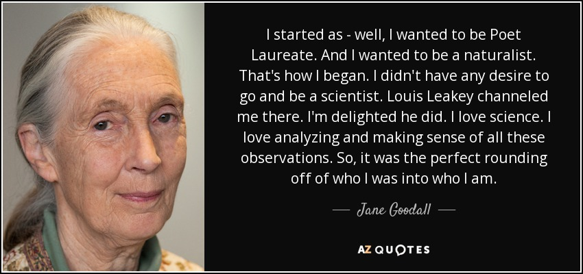 I started as - well, I wanted to be Poet Laureate. And I wanted to be a naturalist. That's how I began. I didn't have any desire to go and be a scientist. Louis Leakey channeled me there. I'm delighted he did. I love science. I love analyzing and making sense of all these observations. So, it was the perfect rounding off of who I was into who I am. - Jane Goodall