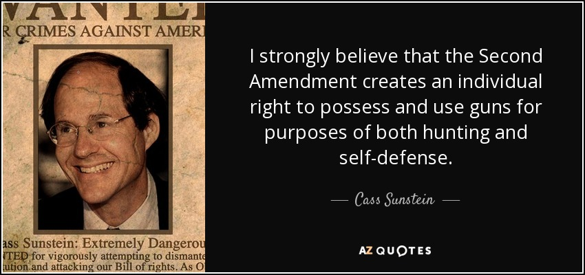 I strongly believe that the Second Amendment creates an individual right to possess and use guns for purposes of both hunting and self-defense. - Cass Sunstein