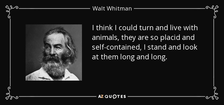 I think I could turn and live with animals, they are so placid and self-contained, I stand and look at them long and long. - Walt Whitman