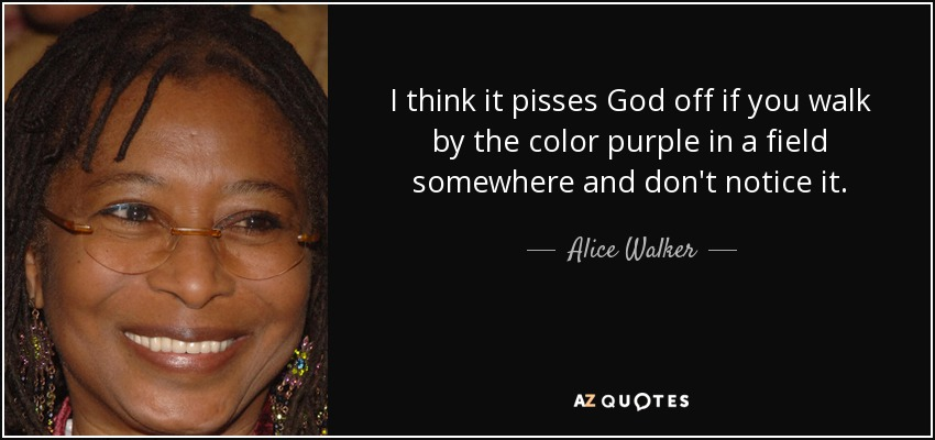 I think it pisses God off if you walk by the color purple in a field somewhere and don't notice it. - Alice Walker