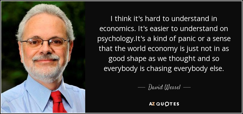 I think it's hard to understand in economics. It's easier to understand on psychology.It's a kind of panic or a sense that the world economy is just not in as good shape as we thought and so everybody is chasing everybody else. - David Wessel