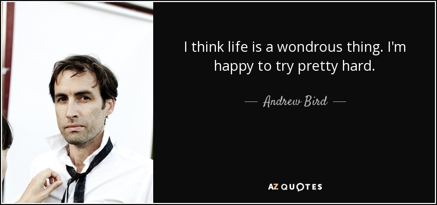 I think life is a wondrous thing. I'm happy to try pretty hard. - Andrew Bird