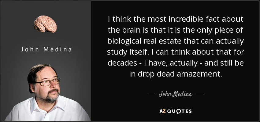 I think the most incredible fact about the brain is that it is the only piece of biological real estate that can actually study itself. I can think about that for decades - I have, actually - and still be in drop dead amazement. - John Medina