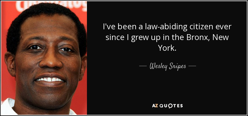 I've been a law-abiding citizen ever since I grew up in the Bronx, New York. - Wesley Snipes